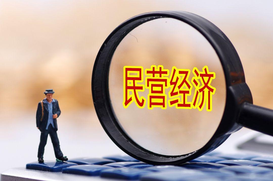 深圳民企进出口成绩亮眼