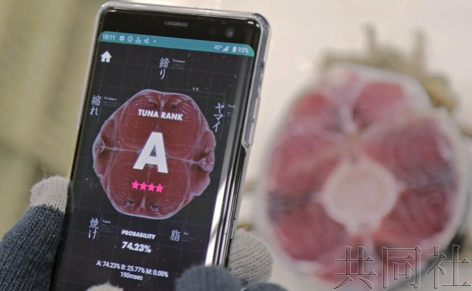日本公司开发AI鉴定金枪鱼品质的系统