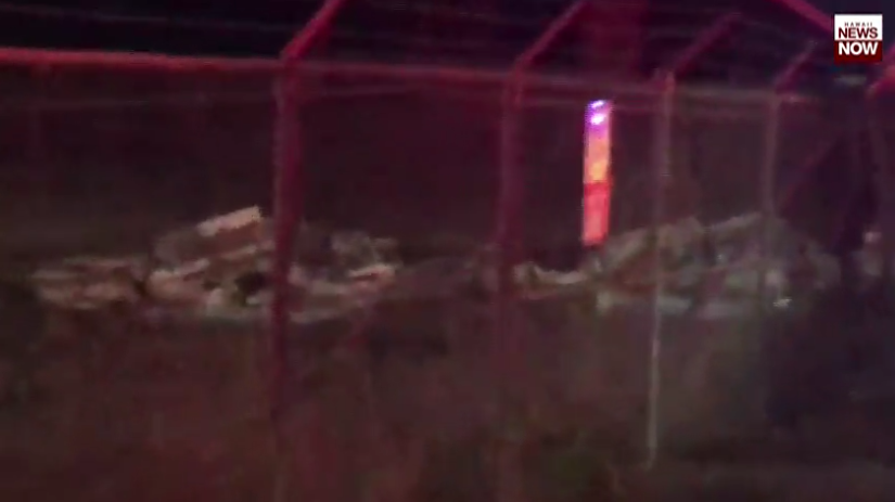 快讯!夏威夷一架双引擎跳伞飞机坠毁,机上9人全部遇难
