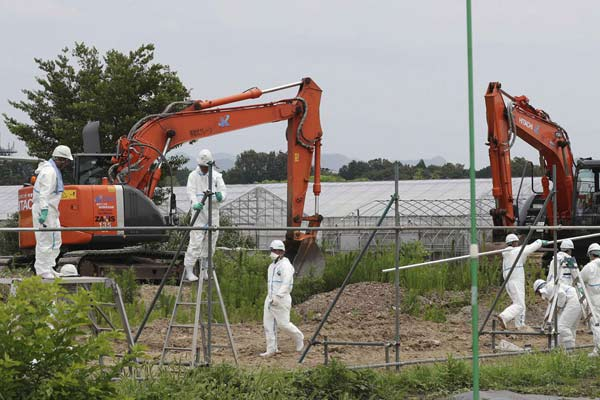 日本岐阜县确认第18例猪瘟感染 开端扑杀1200头猪