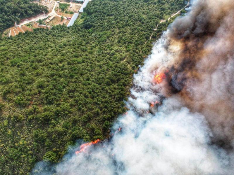 800人救援4小时 北京平谷金海湖山火被扑灭