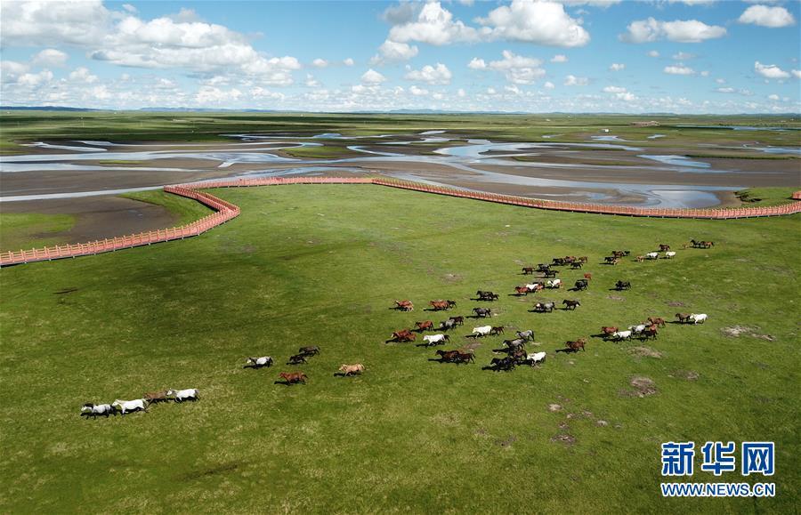 马蹄踏水 舞动草原