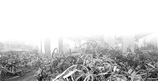 杭州几百辆共享单车集体消失 背后深藏着一条黑色产业链