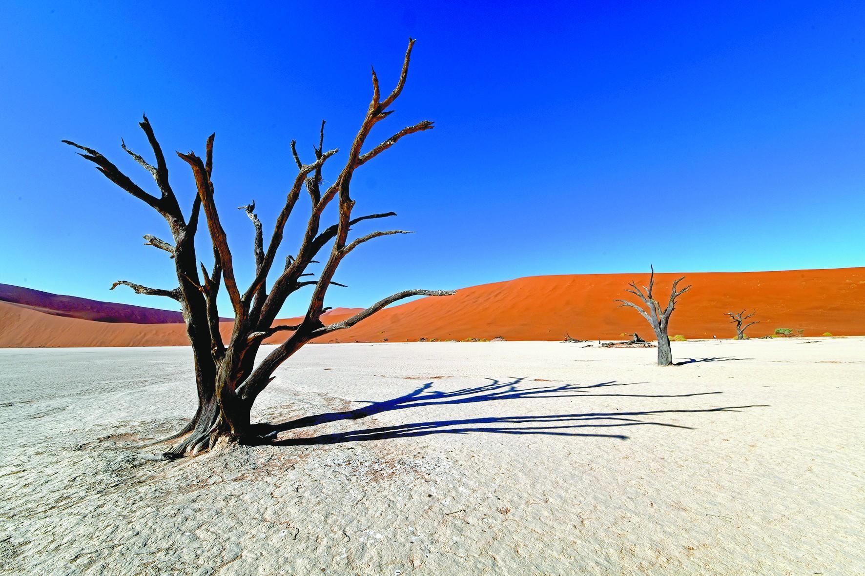 纳米比亚红沙漠惊艳了时光