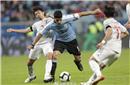 南美洲足联和美洲杯组委会对观众人数和草坪状况表示满意