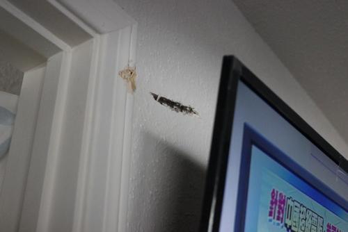 美媒:美休斯敦一公寓遭歹徒持枪扫射 子弹穿墙惊醒熟睡华裔