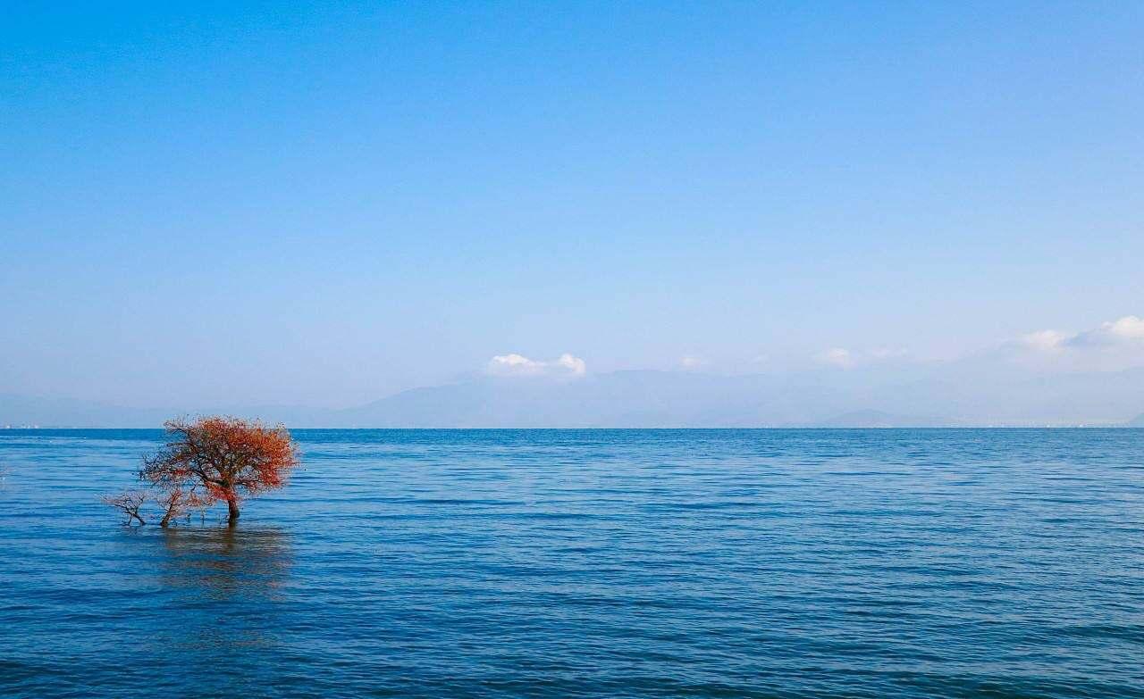 """高质量旅游让""""风花雪月""""的大理更迷人"""