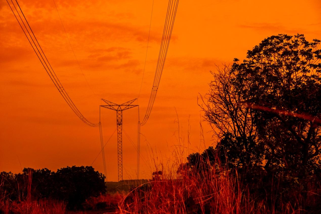 巴西纪行二十一——走进原始森林