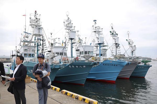 时隔30余年日本正式重启商业捕鲸 船只准备工作就绪