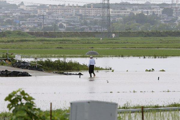 日本西南部降暴雨 稻田被淹 道路被毁