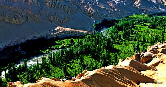 1-5月吐鲁番共接待游客645.85万人 旅游新思维决定旅游新高度