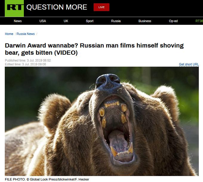 """俄男子""""挑衅""""小熊手被咬,网友:熊甚至给他留了余地"""