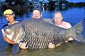 英男子与巨型鲤鱼搏斗近80分钟将其捕获