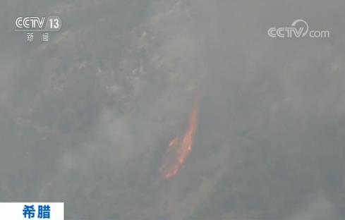 希臘埃維亞島發生多起山火 10名當地居民被送醫