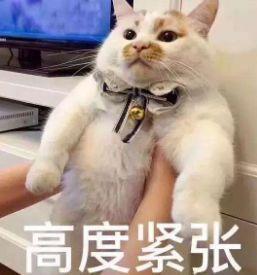 """期末成绩不理想,南京一小学生竟被吓到""""中毒""""!医生的话家长要"""