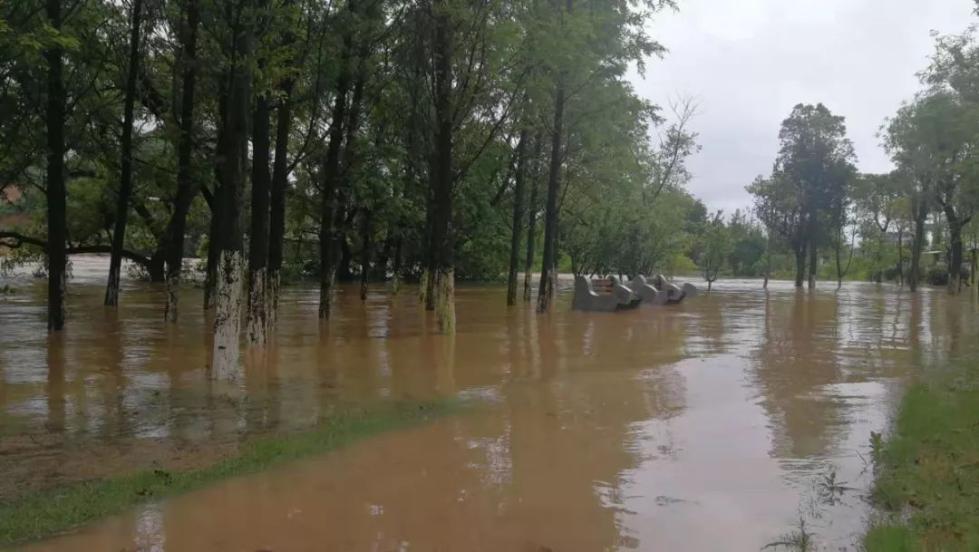 暴雨黄色预警连发三天!南方局地出现洪涝出行靠划船