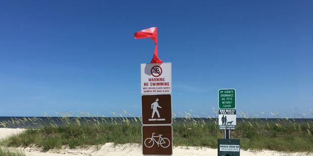 因有毒藻类爆发 美国密西西比州海滩全部关闭