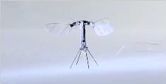 世界最小无人机,只有蜜蜂大小,无需外部电源就能自主飞行