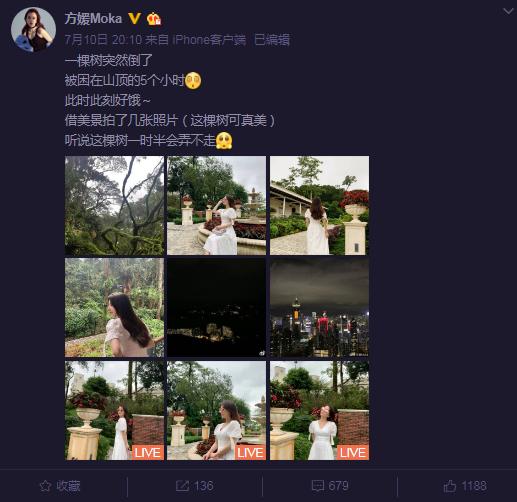 天王嫂方媛偶遇大树倒塌被困5小时 不忘拍美照凹造型