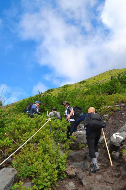王李丹妮 非你莫属(艺人达式常近况)富士山正式迎来爬山季静冈、山梨两边爬山道悉数敞开