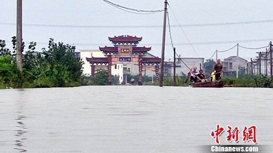 杨弘微博(女主角很冷的小说)江西金溪水灾见识:洪水围村 18万亩早稻被淹