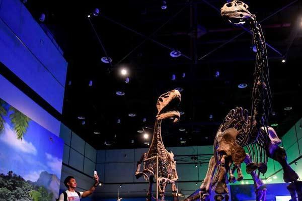 自贡恐龙展亮相广东省博物馆