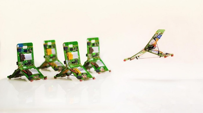 科学家展示微型蚂蚁机器人:功能多变 支持协作