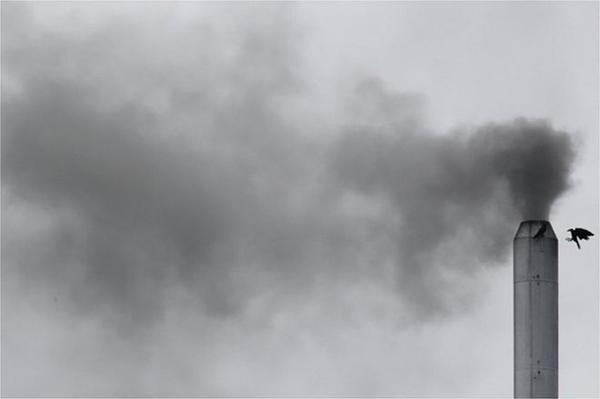 全球空气污染最严重十城中占七城的印度,开始试点治霾新举措