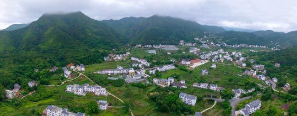 """圆村走出""""茶园经济""""现代农业的新路"""