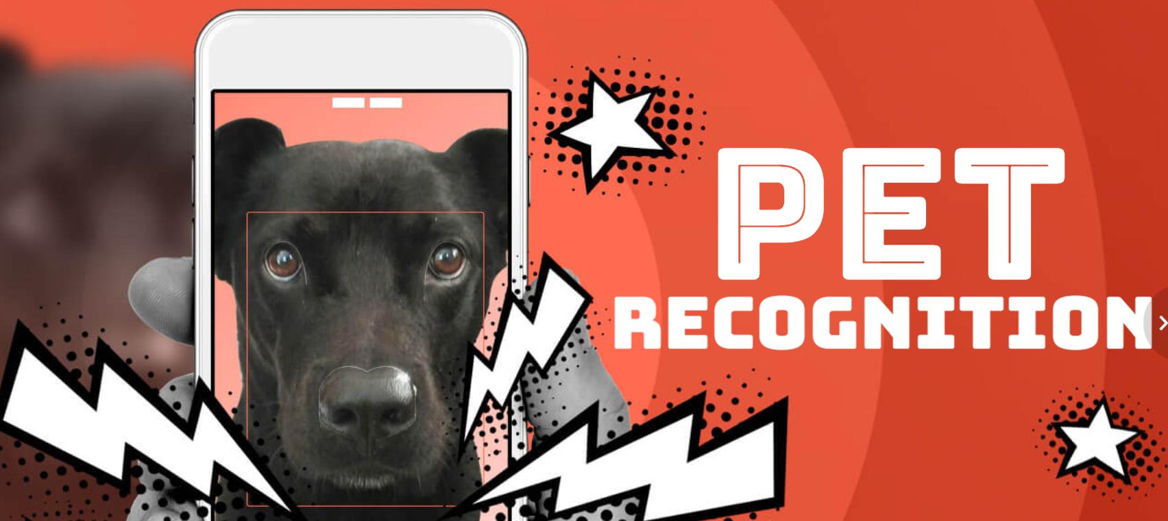 """旷视科技推出""""AI狗鼻子识别"""",可用于监控不文明养犬"""