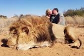 加拿大夫妻猎杀狮子后拍照发到网上炫耀