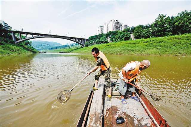 巴南:让五布河清清亮亮入长江