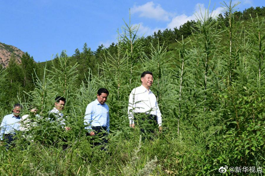 习近平:建设生态安全屏障要世世