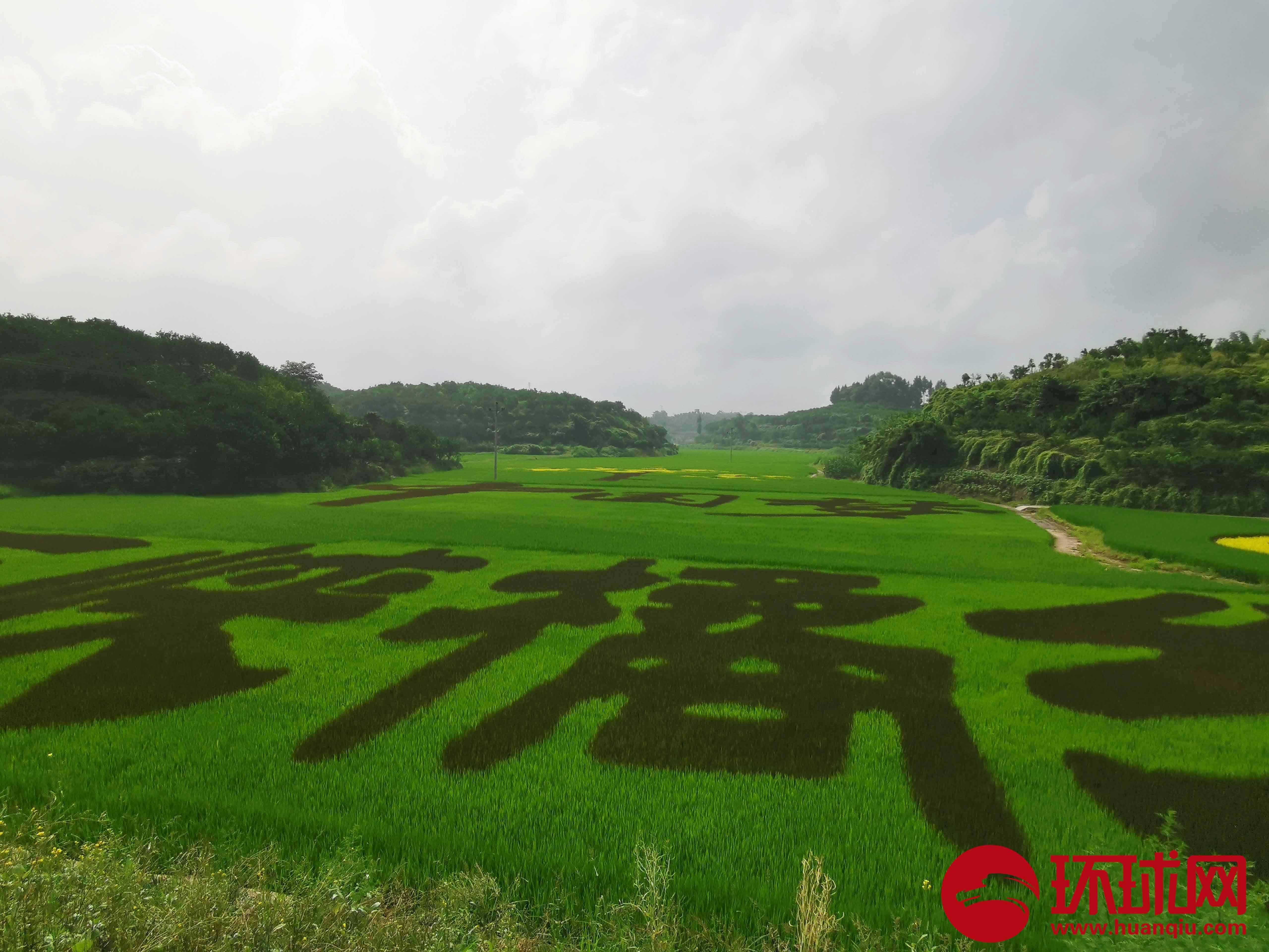 """重庆忠县:走""""农文旅""""发展之路"""
