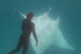 潜水员水下遇魔鬼鱼求助 成功取出眼下鱼钩
