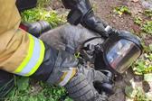 超有爱!暖心消防员心肺复苏救活猫咪