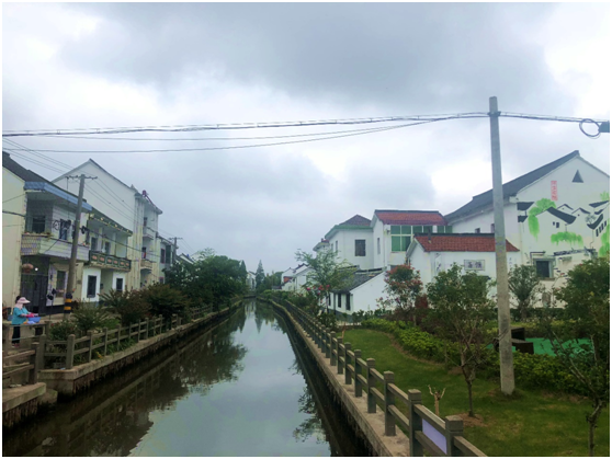 上海金山区的乡村旅居模式