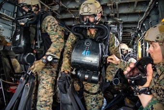美荷海军陆战队联合训练 胸前挂巨大潜水装备