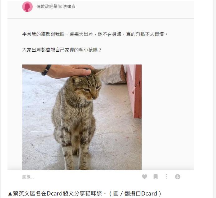 蔡英文出访开小差匿名偷晒撸猫照 台网友批:想东想西