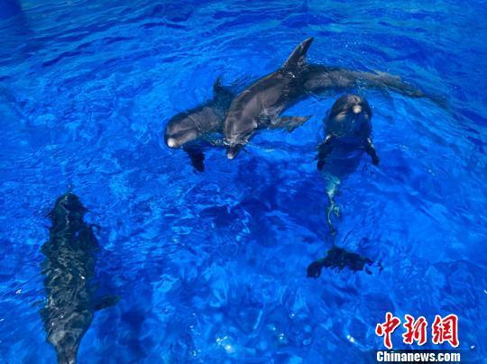http://www.zgqhl.cn/qinghaixinwen/15020.html