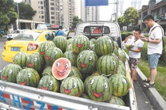 """中国成最大西瓜生产和消费国 """"吃瓜群众""""将西瓜吃成大产业"""