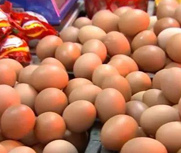 1筐鸡蛋半个月涨20元!
