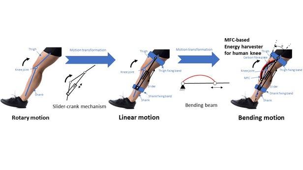 可穿戴设备从膝盖弯曲运动中收获能量