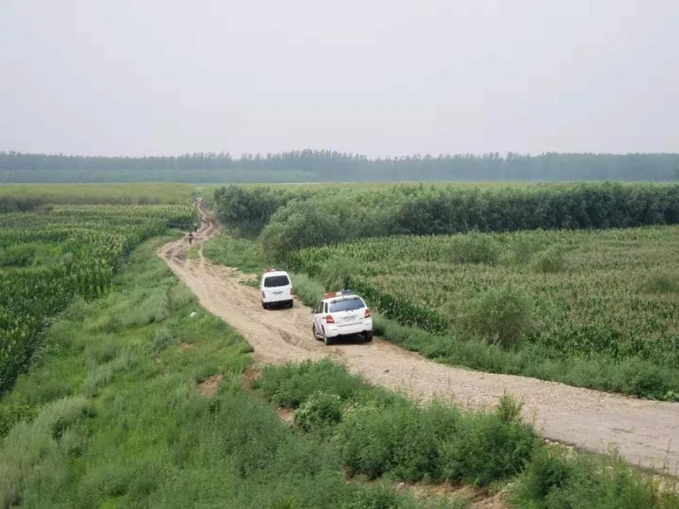 鸣枪!百名民警正在追捕!沈阳女出租车司机被劫,嫌疑人逃进玉米地!