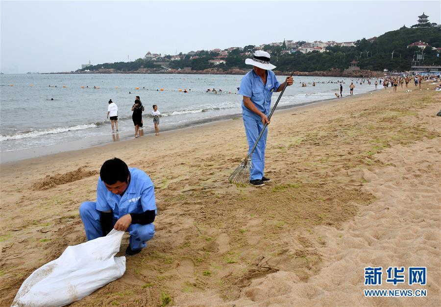 青岛:清理海滩迎客来