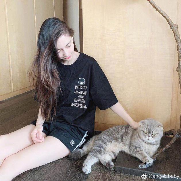 Angelababy晒与爱猫合影 一双大长腿抢眼