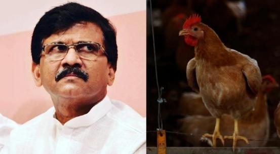 """""""阿育吠陀鸡肉""""不是肉?印党派领袖要把鸡肉列为素食惹争议"""