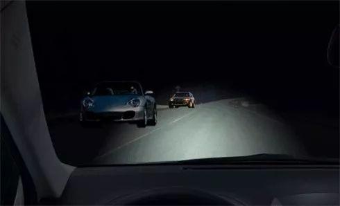 惊险!夜间驾驶,山羊突然闯入高速公路!司机这个操作救了自己