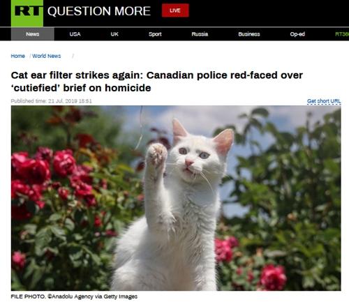 猫猫滤镜又来!加拿大女警正直播通报凶杀案调查结果,画风突变