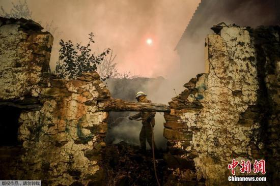 葡萄牙中部野火肆虐已致30人伤 民众提水自救保家园